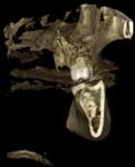 analisis_tomografico_pieza_48_05.jpg
